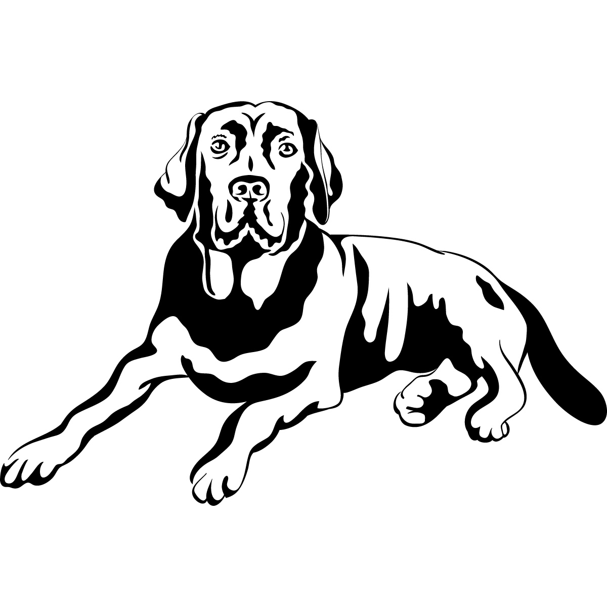 labrador colouring pages labrador retriever by kangaleer kennels on deviantart pages labrador colouring
