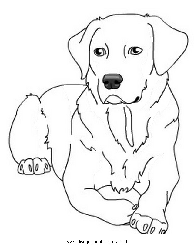 labrador colouring pages online coloring pages starting with the letter l colouring labrador pages