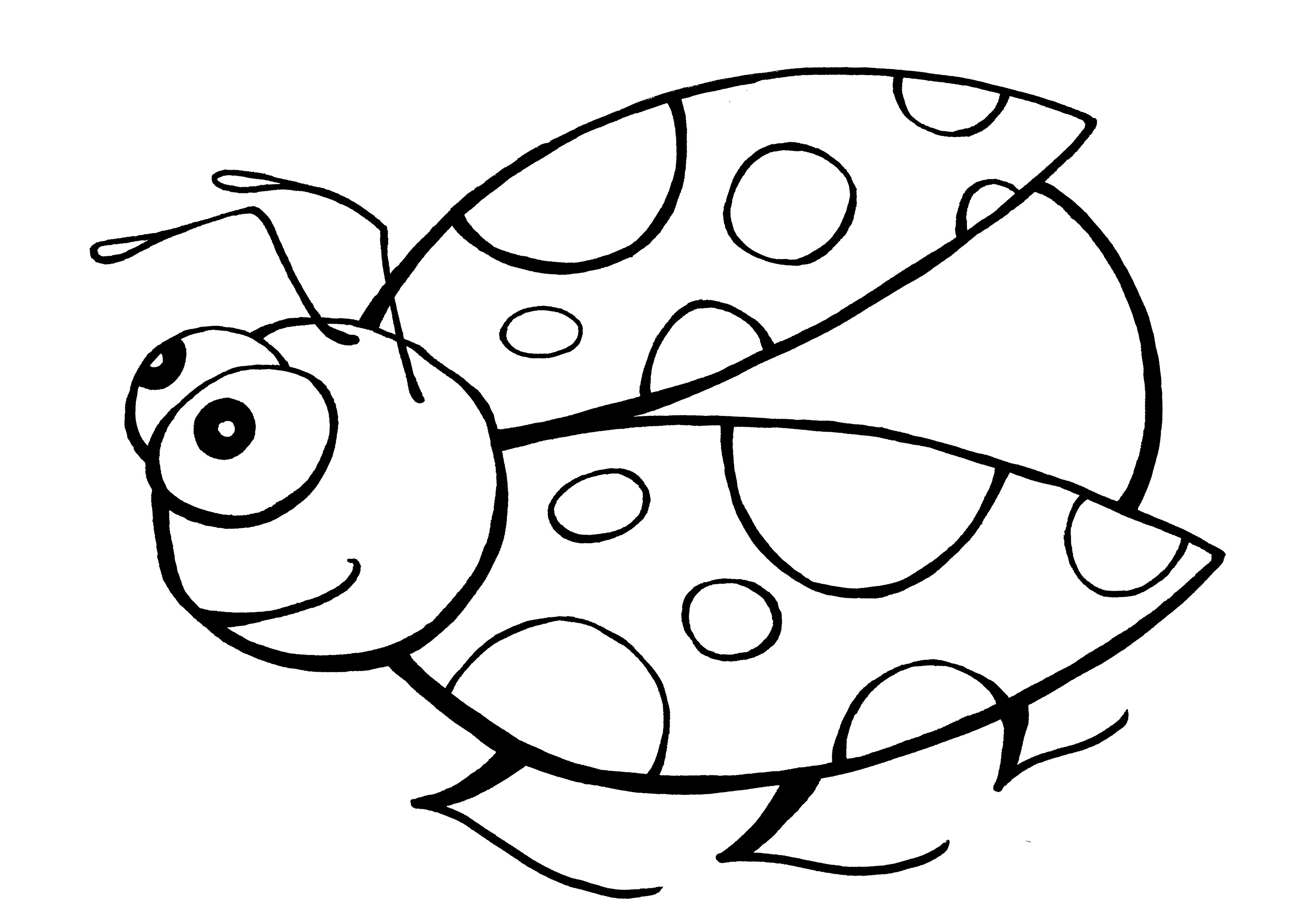 Lady bug coloring pages