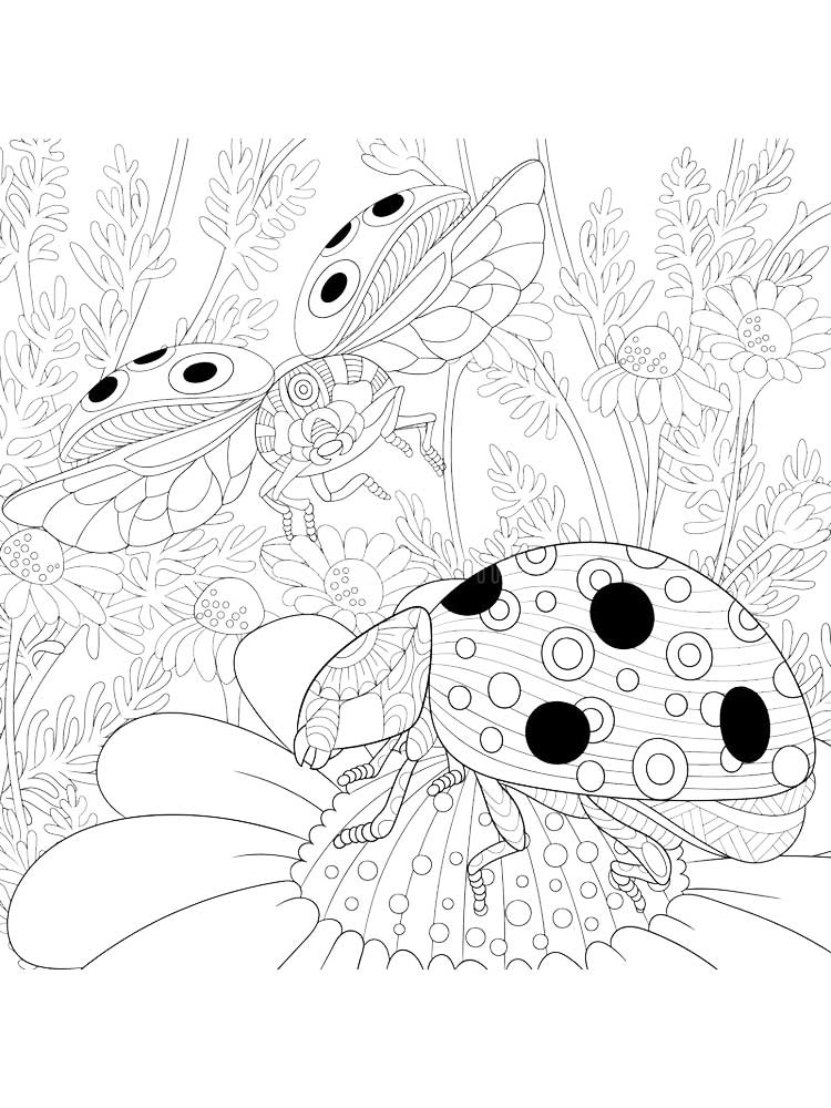 ladybug coloring book free ladybug coloring pages for adults printable to ladybug book coloring