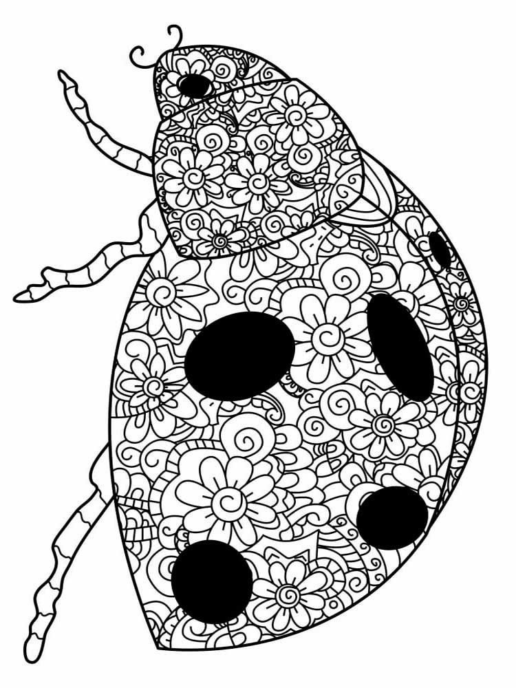 ladybug coloring book free ladybug coloring pages for adults printable to ladybug book coloring 1 1