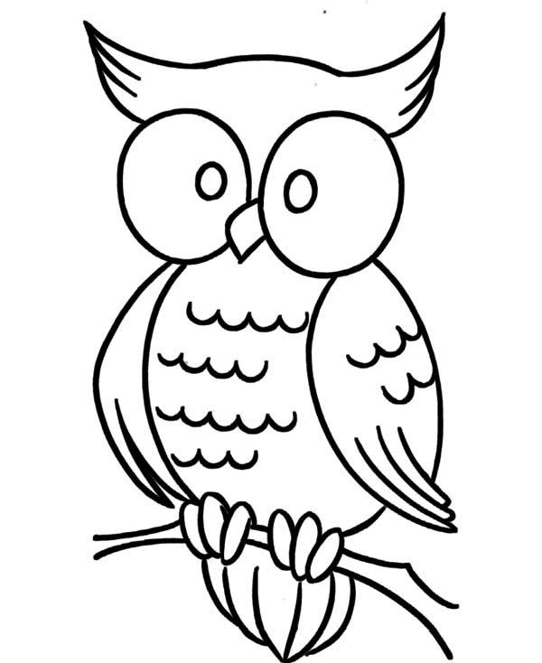 Large animal coloring pages