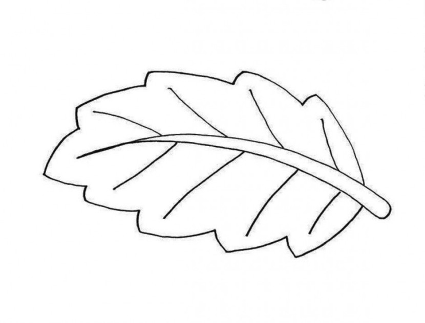 leaf clipart coloring fall leaves clip art black and white clipartioncom coloring leaf clipart
