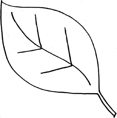 leaf clipart coloring fall leaves clipart coloring pages 10 free cliparts leaf coloring clipart