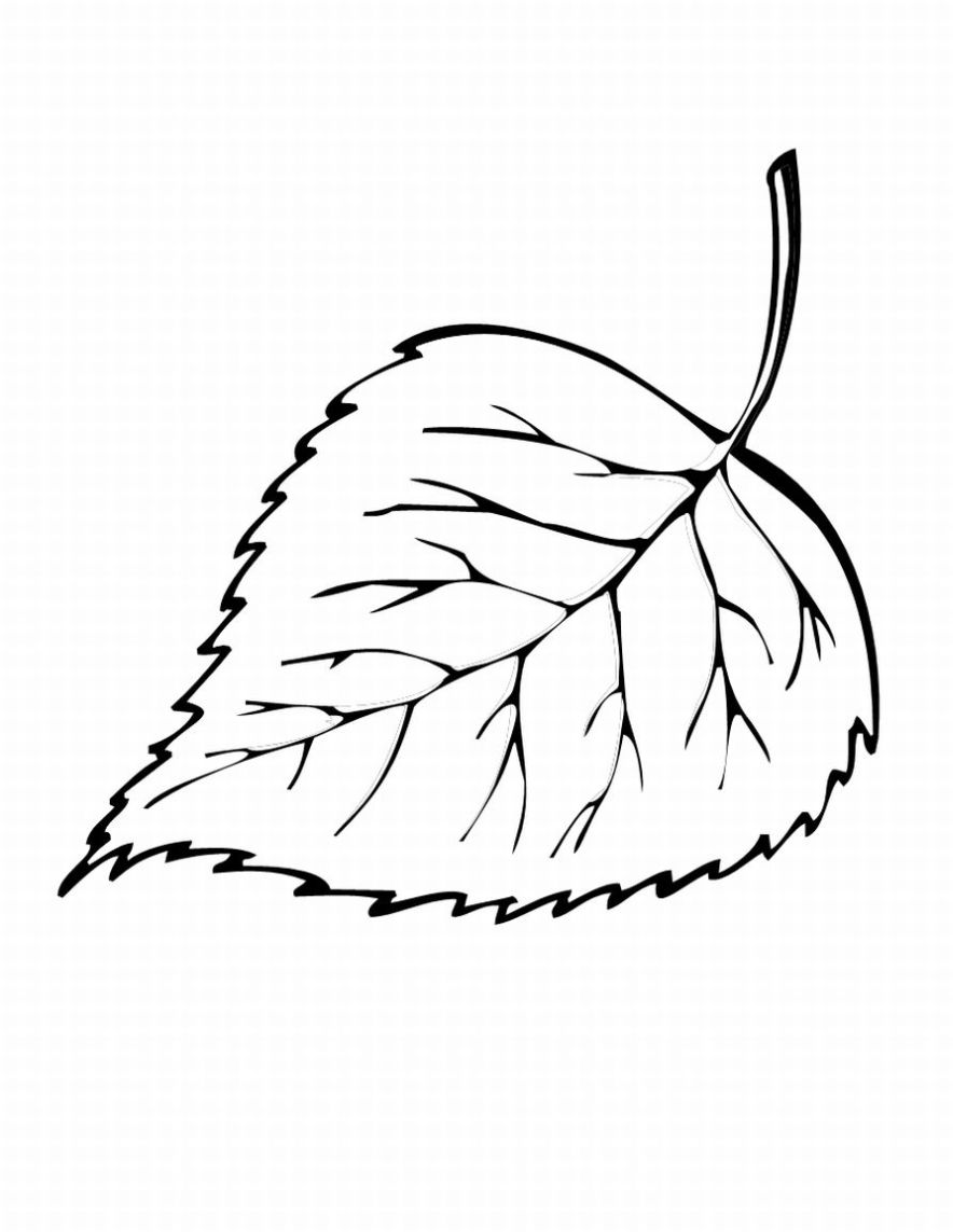 leaf coloring pages leaf coloring page 13 printable coloring page for kids and pages leaf coloring