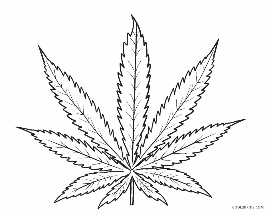 leaf coloring pages leaf coloring pages for preschool at getcoloringscom leaf pages coloring