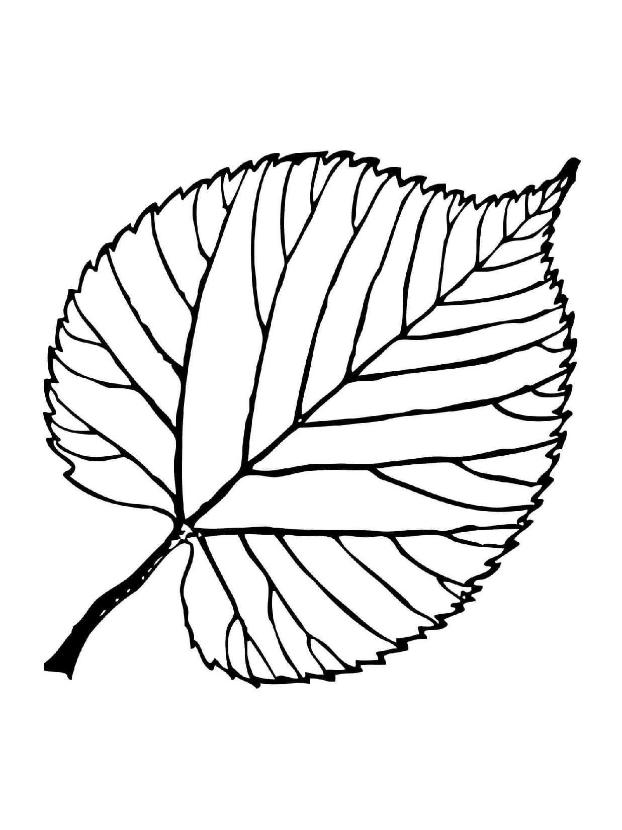 leaf coloring pages leaf coloring pages to print pages coloring leaf