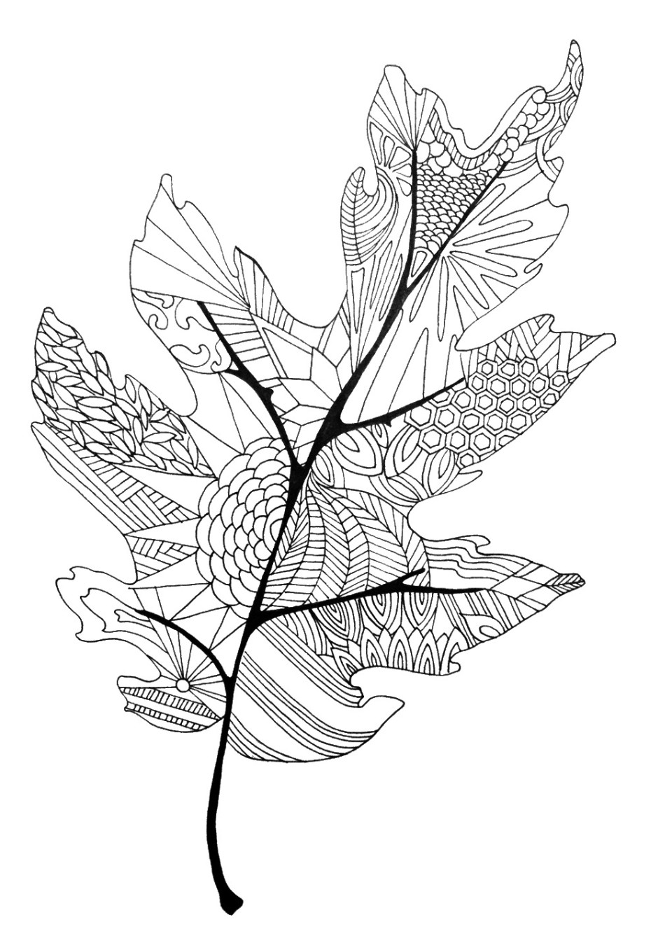 leaf coloring pages leaves coloring pages download and print leaves coloring coloring leaf pages