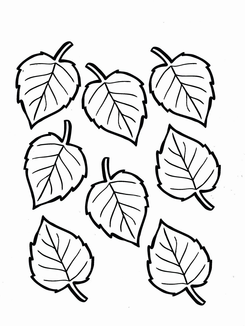 leaf coloring pages maple leaves coloring page fall illustration abcteach leaf coloring pages