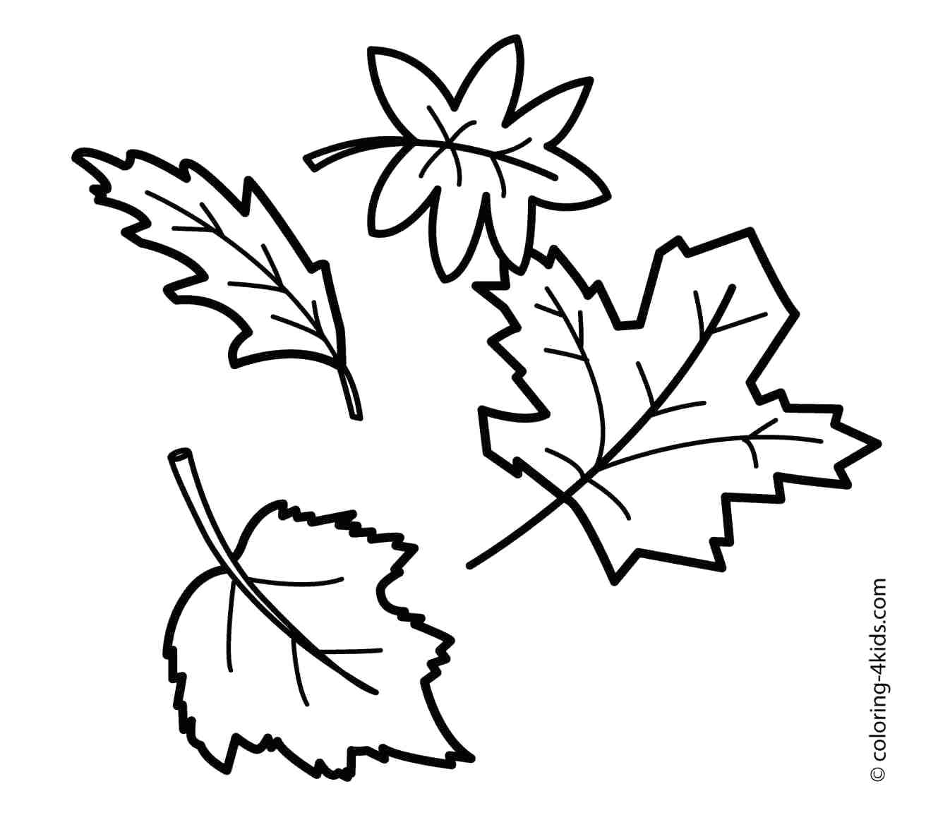 leaf for coloring fall coloring pages for kids and adults 101 activity leaf coloring for