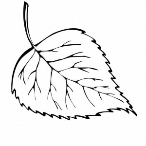 leaf for coloring get this fall leaves coloring pages for kindergarten 857ag leaf coloring for