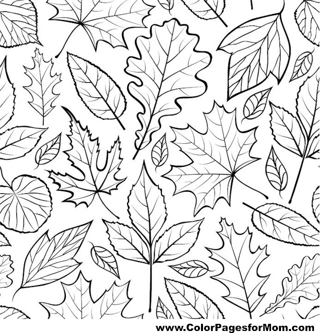leaf for coloring how to draw a pot leaf step by step tattoos pop culture leaf for coloring