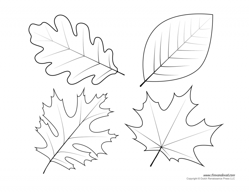 leaf for coloring leaf coloring page 13 printable coloring page for kids and coloring leaf for
