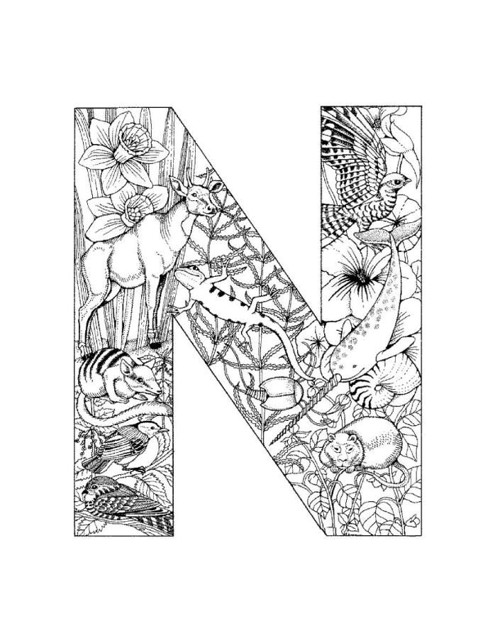 letter n coloring pages for adults letter n coloring pages preschool coloring home pages for letter n adults coloring