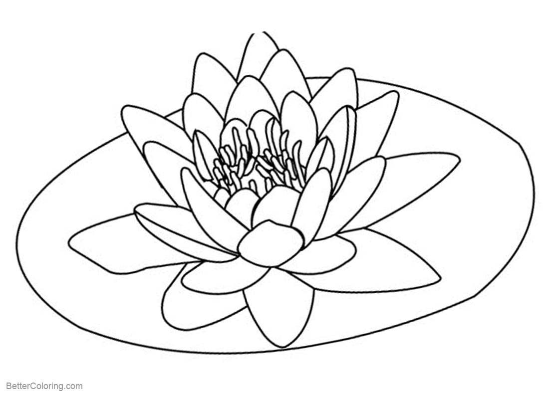lily pad flower coloring pages lily pad flower coloring pages coloring home pages lily coloring flower pad