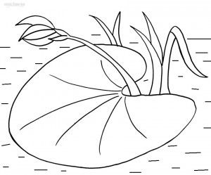 lily pad flower coloring pages printable lily pad coloring pages for kids cool2bkids flower pad lily pages coloring 1 1