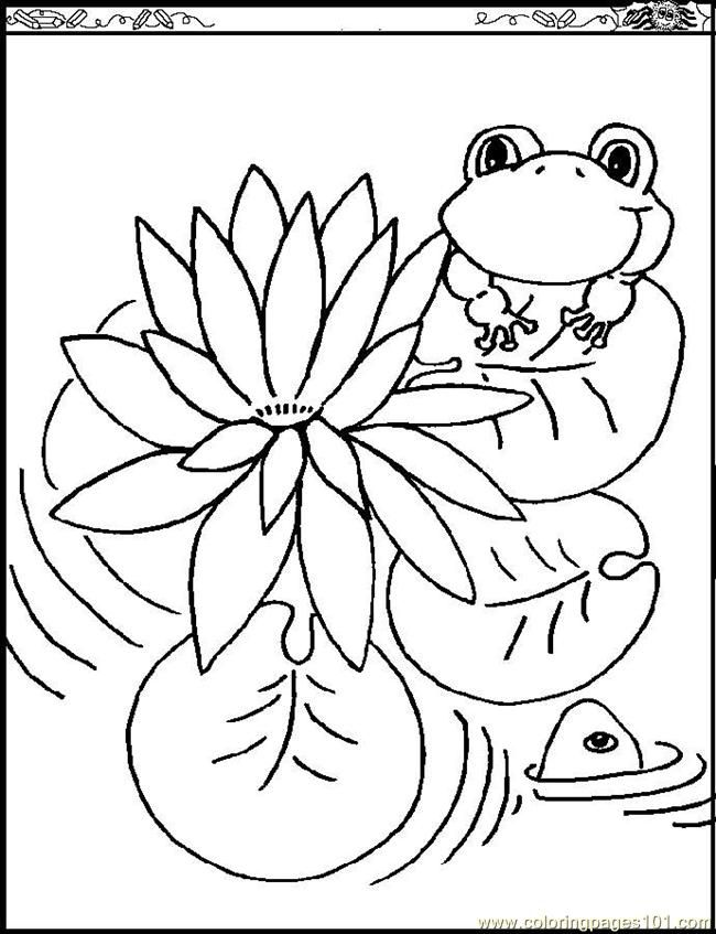 lily pad flower coloring pages printable lily pad coloring pages for kids cool2bkids lily pad flower coloring pages