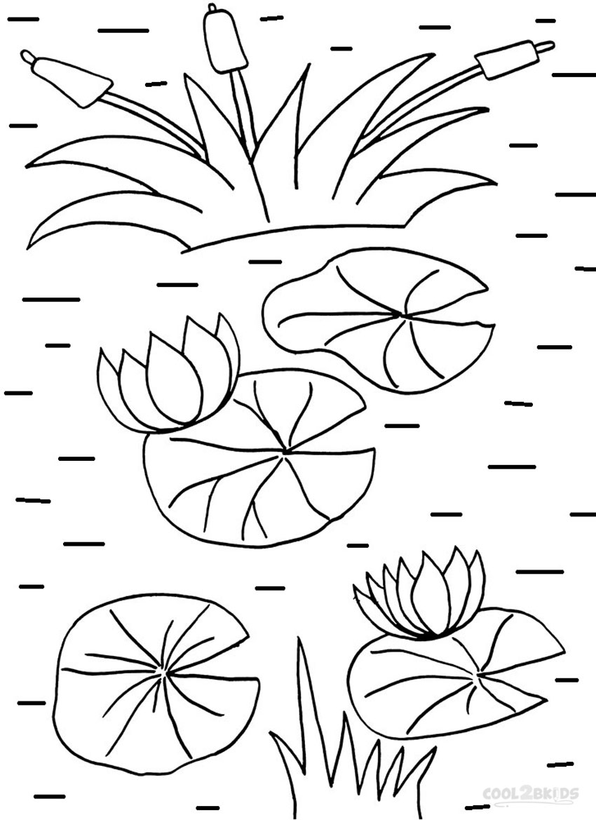 lily pad flower coloring pages water lily blossom super coloring lilies drawing lily flower pad coloring pages