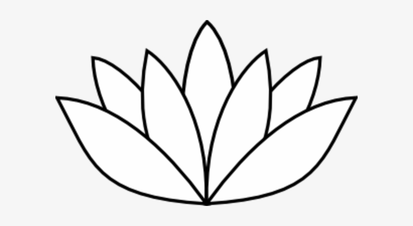 lily pads drawing lily pad flower drawing at paintingvalleycom explore pads drawing lily