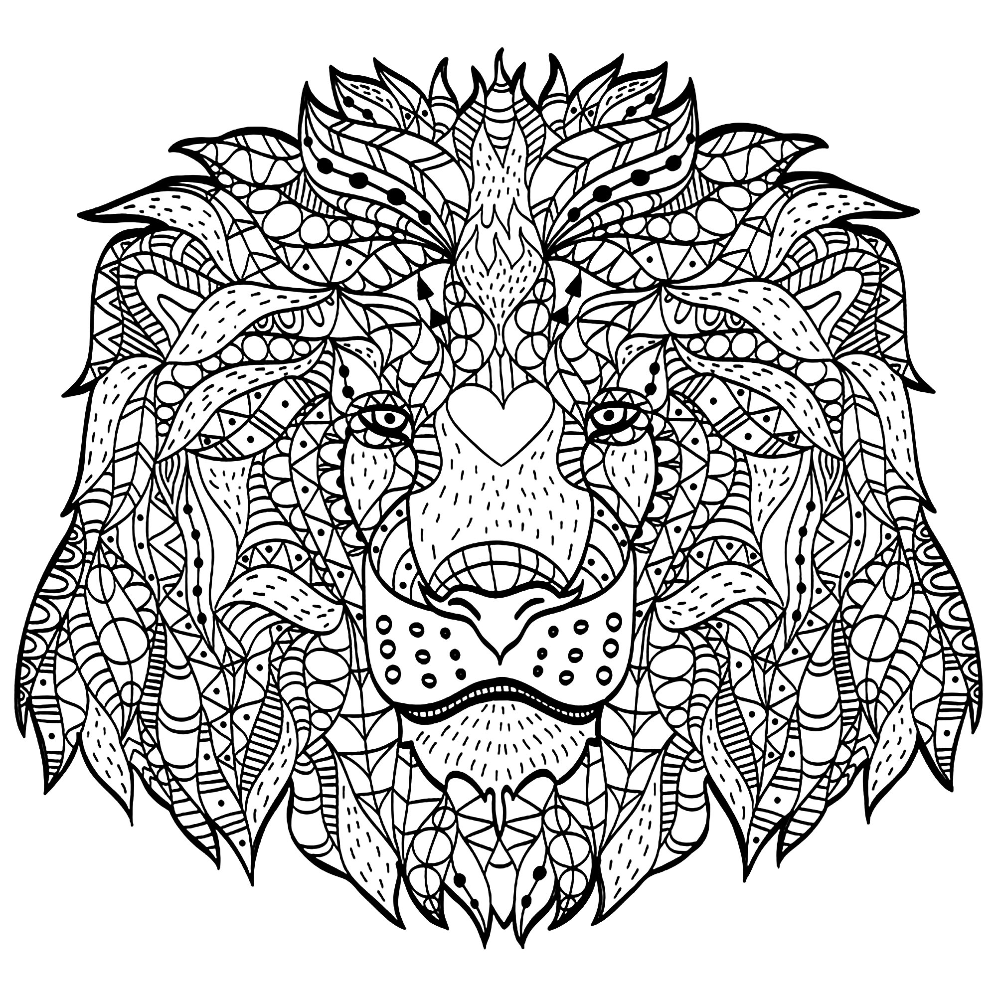 lion coloring pages free printable lion coloring pages at getdrawings free lion coloring pages