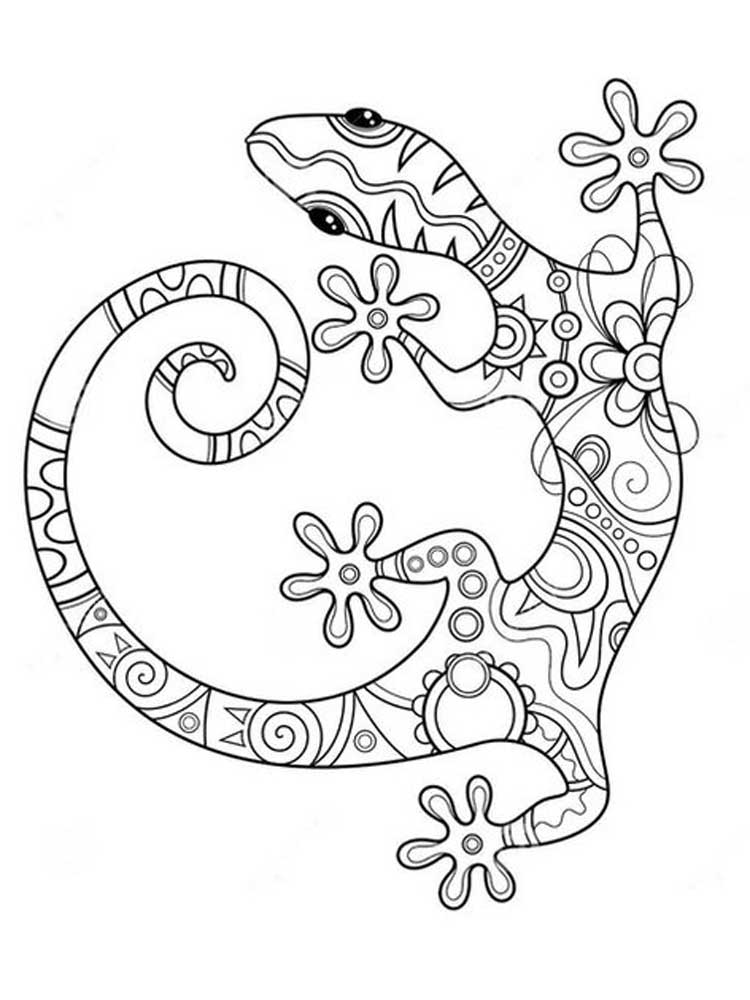 lizard picture to color free lizard coloring pages color to picture lizard