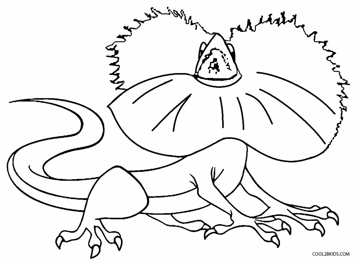 lizard picture to color free lizard coloring pages lizard color to picture