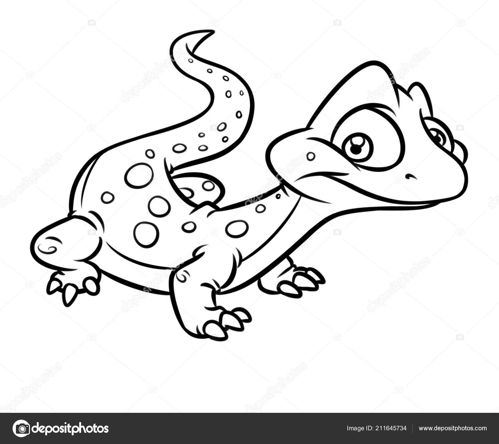 lizard picture to color lizard coloring page digital file download adult color to picture lizard