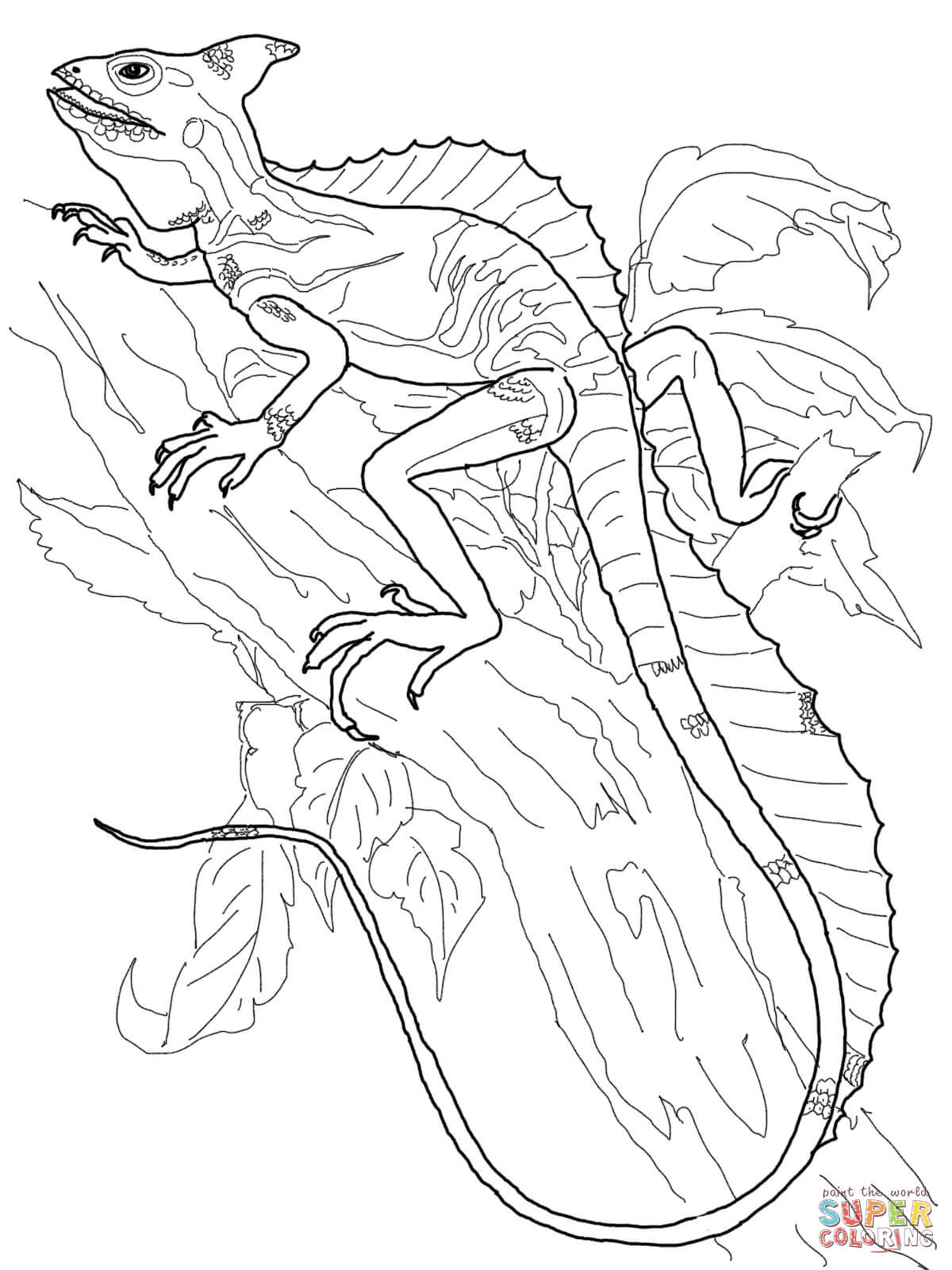 lizard picture to color monitor lizard coloring pages coloring pages to download lizard picture color to