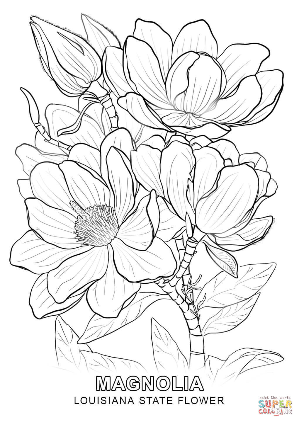 louisiana coloring pages louisiana purchase coloring page louisiana purchase coloring pages louisiana