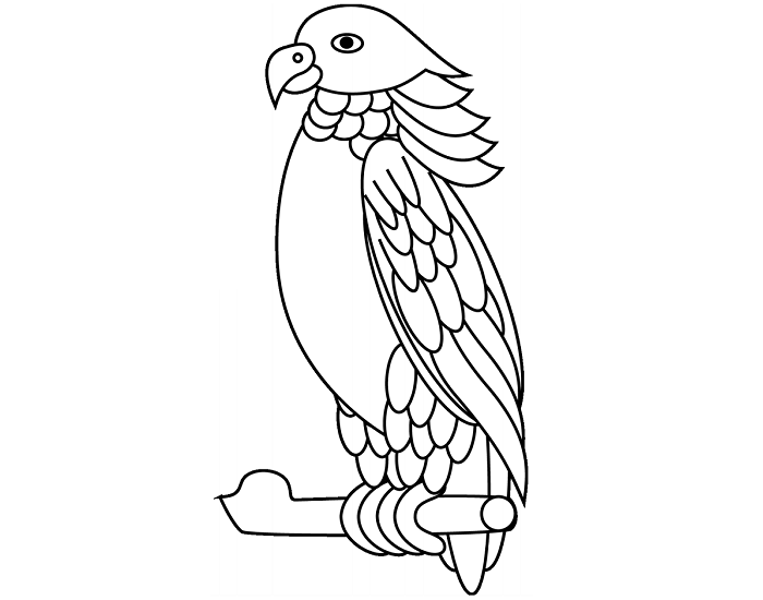 macaw pictures to color macaw pictures to color color pictures macaw to