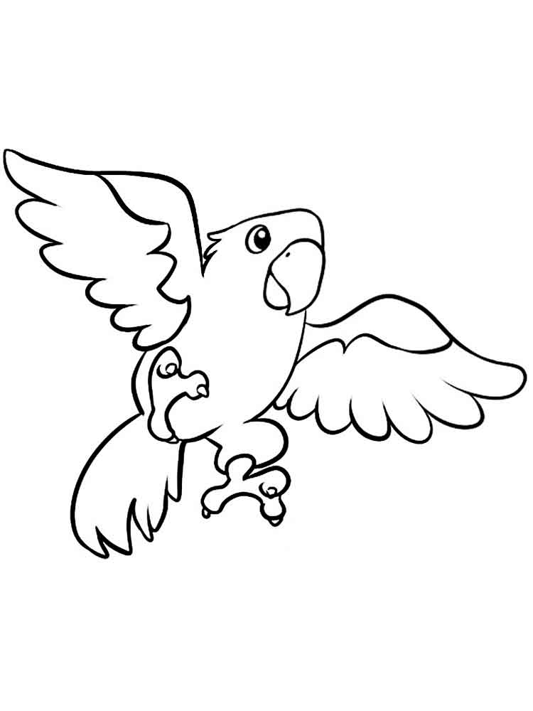 macaw pictures to color printable webkinz coloring pages for kids cool2bkids pictures macaw color to