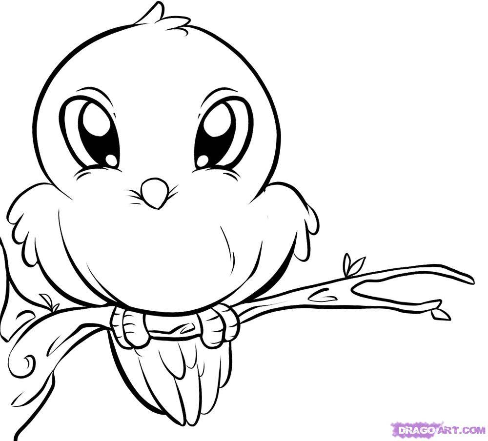 macaw pictures to color thrush coloring pages to download and print for free macaw to color pictures