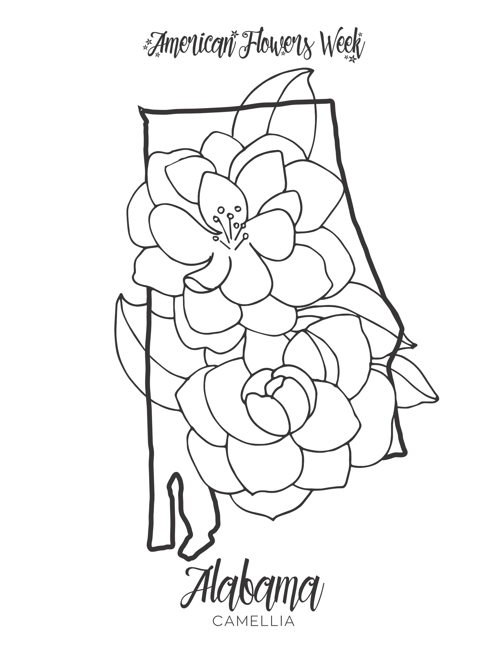 michigan state flower faerlmarie coloring pages 32 michigan state flag coloring flower michigan state