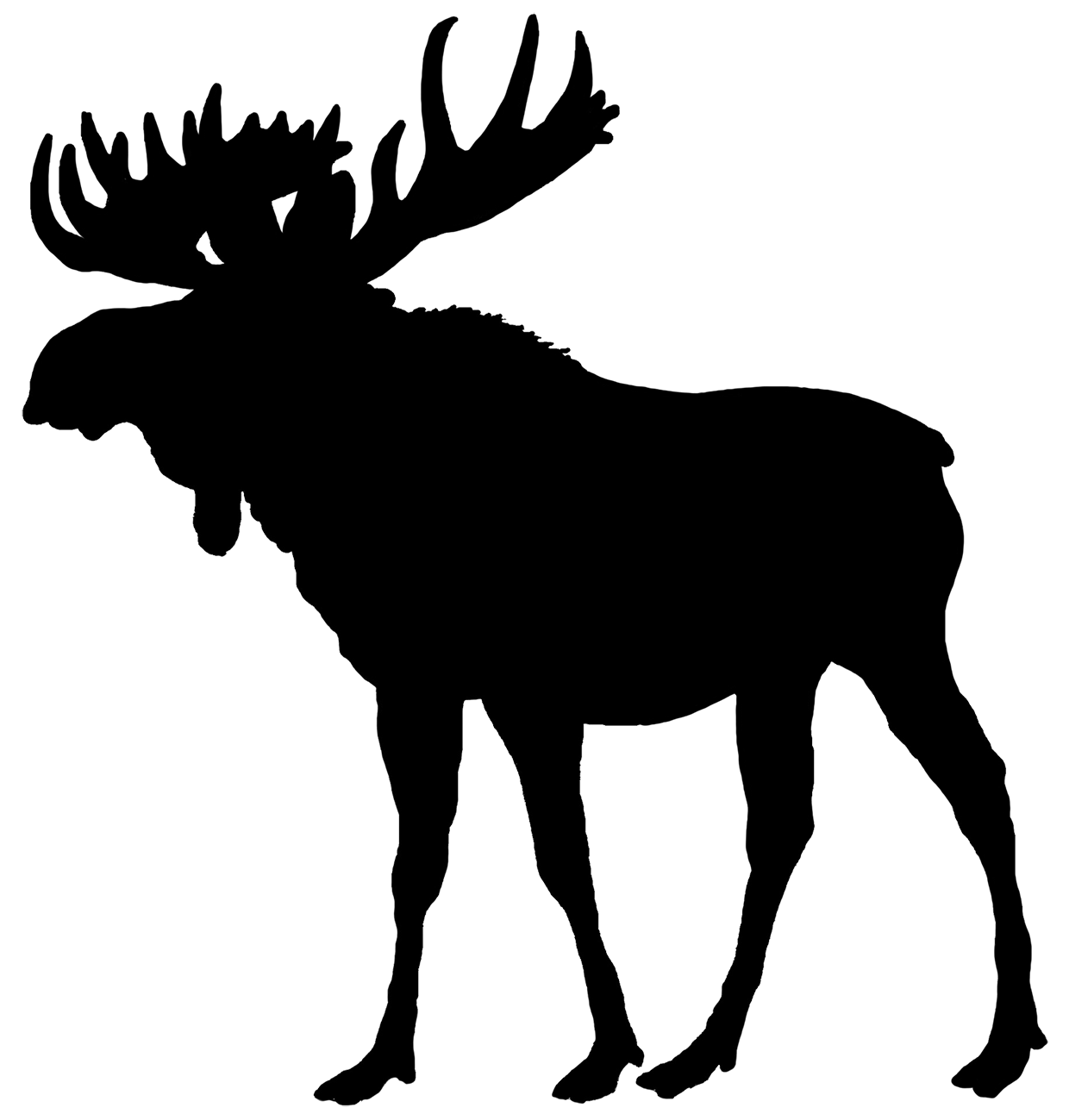 moose silhouette moose silhouette vector free clipart best silhouette moose