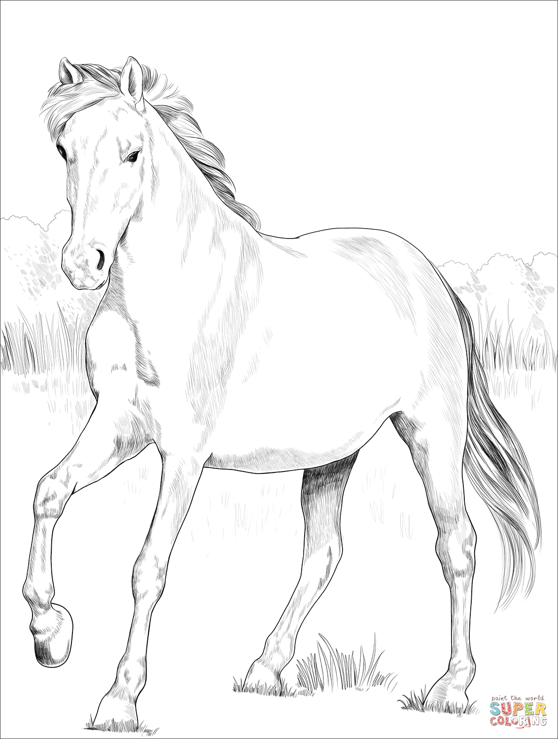 mustang horse coloring pages beautiful mustang horse coloring page free printable coloring horse mustang pages
