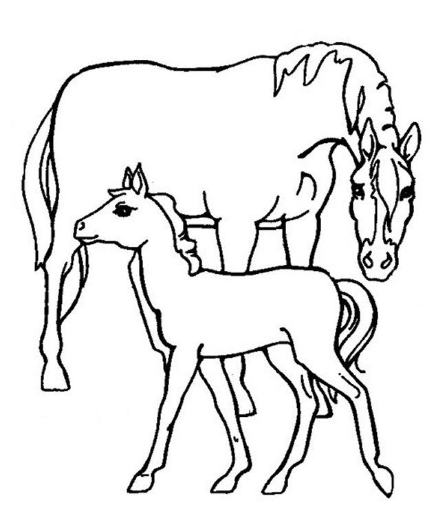 mustang horse coloring pages beautiful mustang horse coloring page free printable horse coloring pages mustang