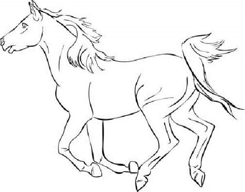 mustang horse coloring pages mustang horse outline coloring pages coloring horse pages mustang