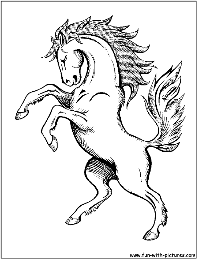 mustang horse coloring pages mustang outline drawing at getdrawings free download pages horse mustang coloring