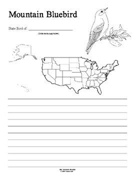 nevada state bird nevada state bird coloring page school project ideas bird nevada state