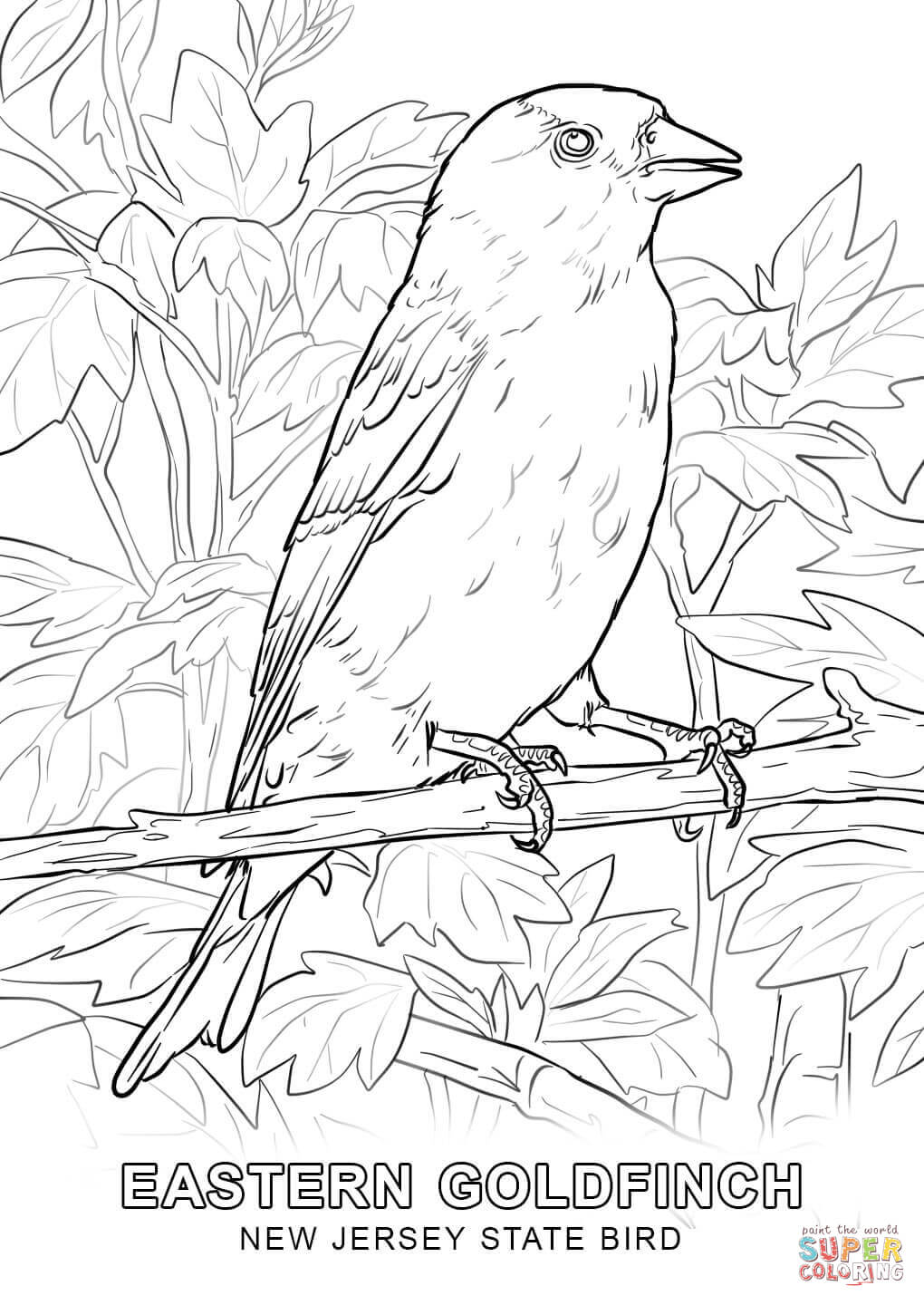 new jersey state seal coloring page new jersey state bird coloring page free printable seal coloring jersey new page state