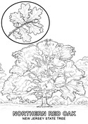 new jersey state seal coloring page new jersey state symbols coloring page free printable state new seal coloring page jersey
