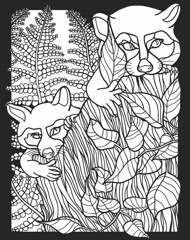 nocturnal animals coloring sheets childhood education nocturnal animals coloring pages free animals coloring nocturnal sheets