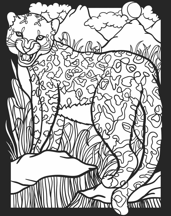nocturnal animals coloring sheets childhood education nocturnal animals coloring pages free coloring animals nocturnal sheets