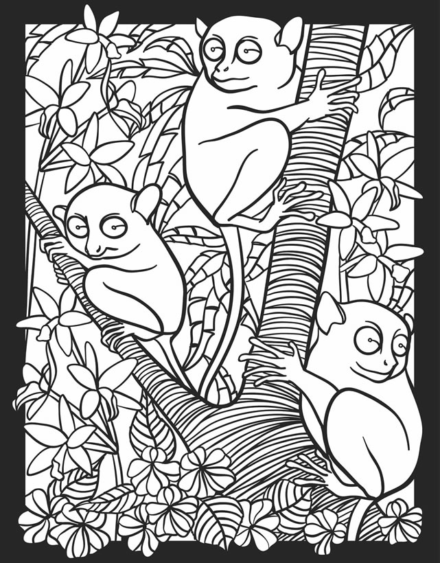 nocturnal animals coloring sheets nocturnal animals coloring pages bats flying coloring sheets animals nocturnal