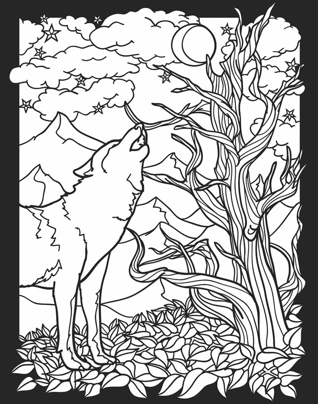 nocturnal animals coloring sheets pictures of nocturnal animals coloring home coloring animals sheets nocturnal