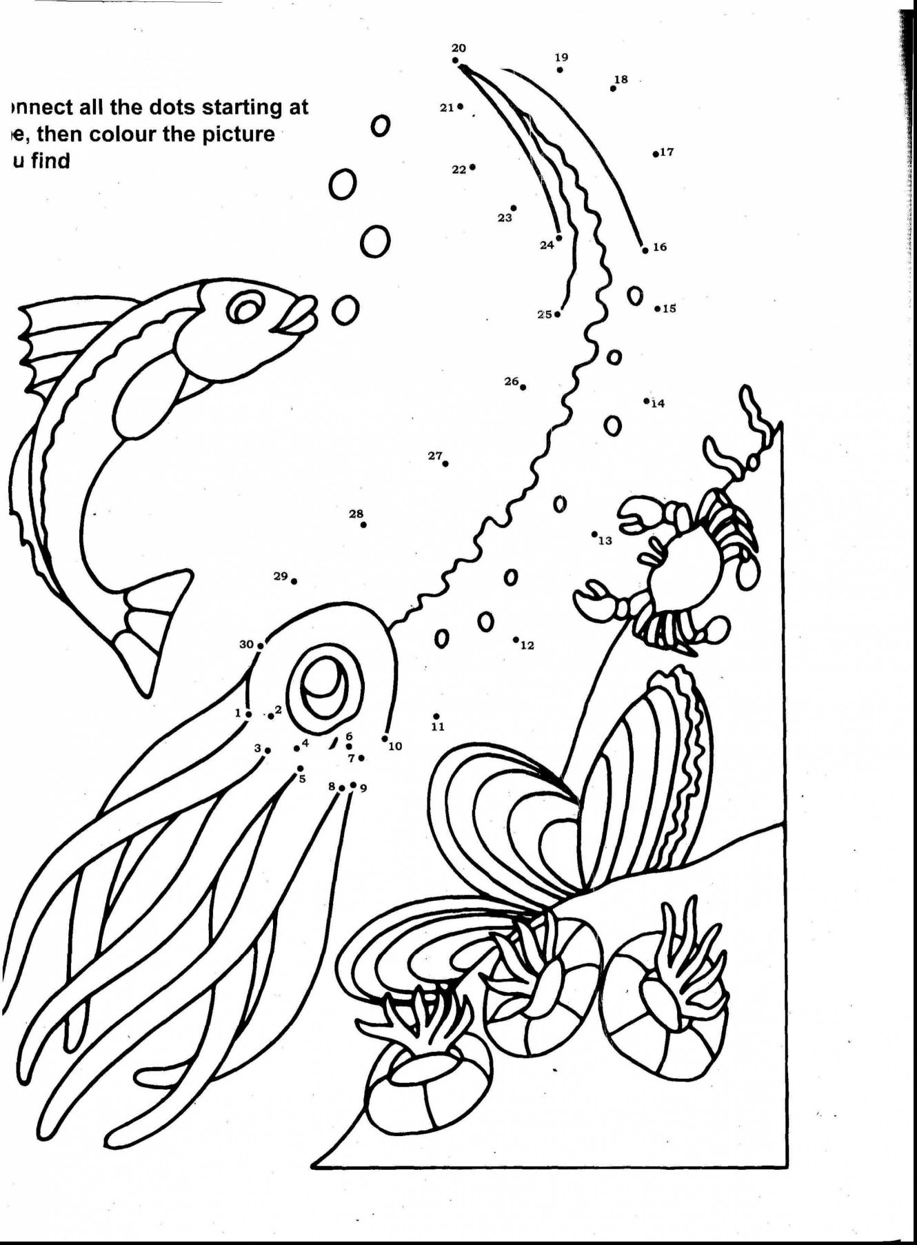 ocean plants coloring pages coral reef in line art style ocean plants and rocks ocean coloring plants pages