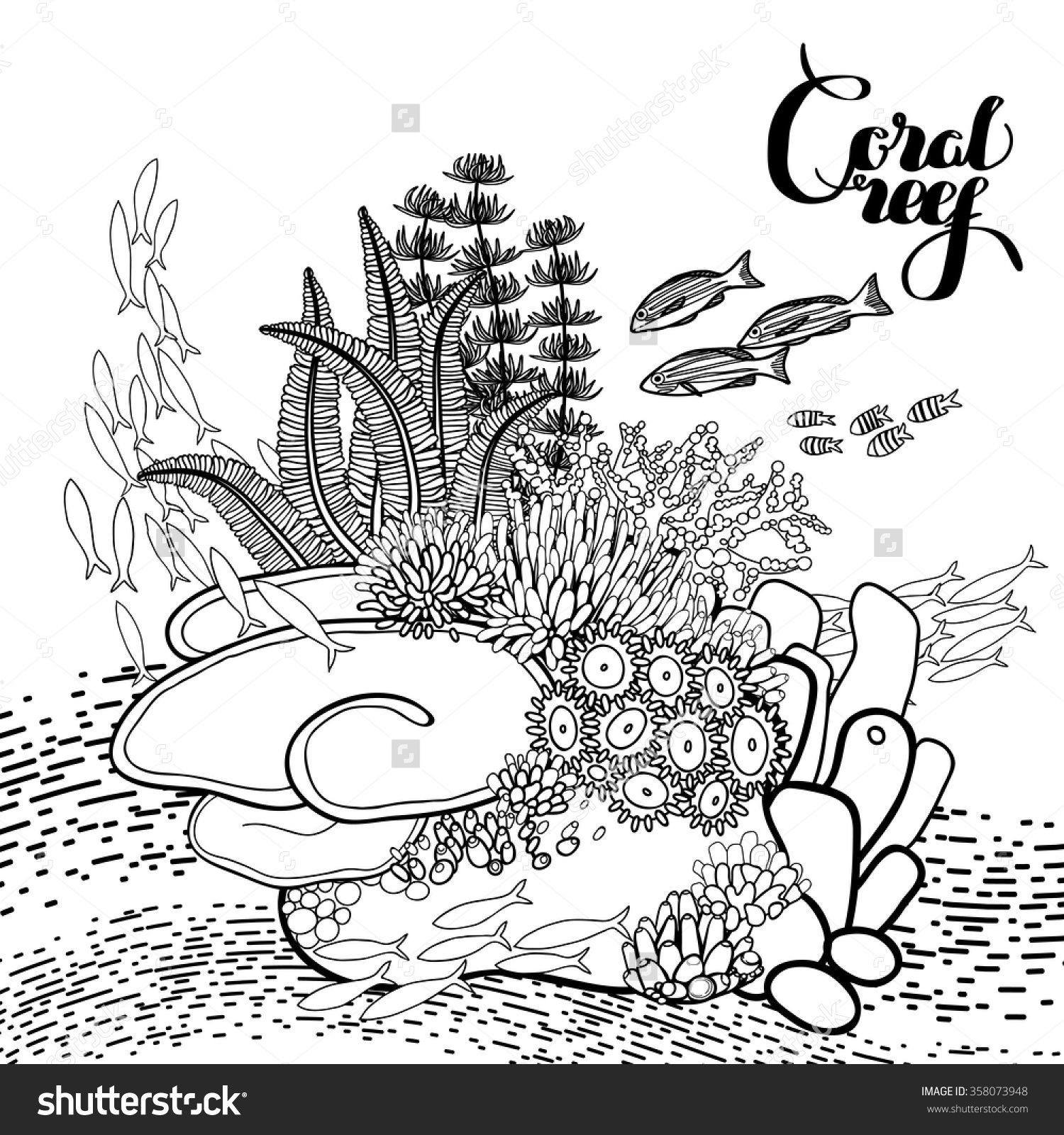 ocean plants coloring pages google image result for httpwwwenchantedlearningcom coloring pages ocean plants