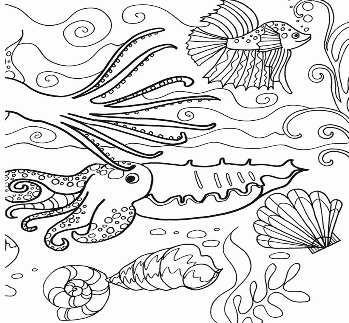 ocean plants coloring pages how to draw coral coral reef coloring pages for kids plants coloring ocean pages