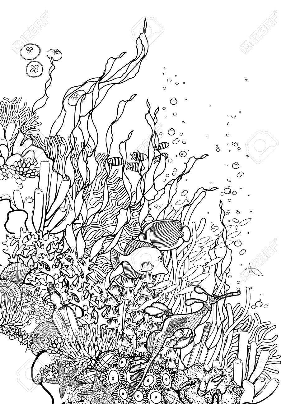 ocean plants coloring pages seaweed coloring pages for kids ocean coloring pages ocean coloring plants pages