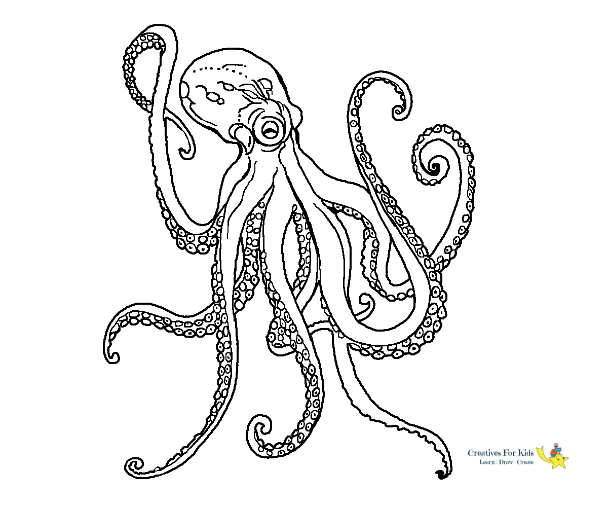 octopus coloring page 29 fish and octopus coloring pages for kids free printables coloring octopus page